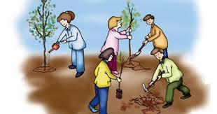 النادي البيئي ودوره في ترسيخ السلوك البيئي السليم